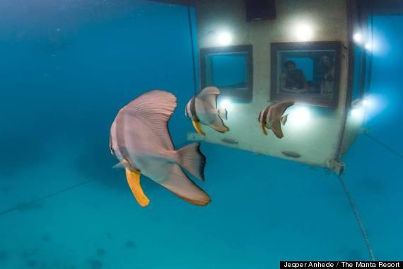 Manta Resort Zanzibar Seal Superyachts Indian Ocean Yacht Agent