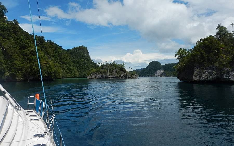 SY_Ocelot_Indonesia_Guide_Seal_Superyachts