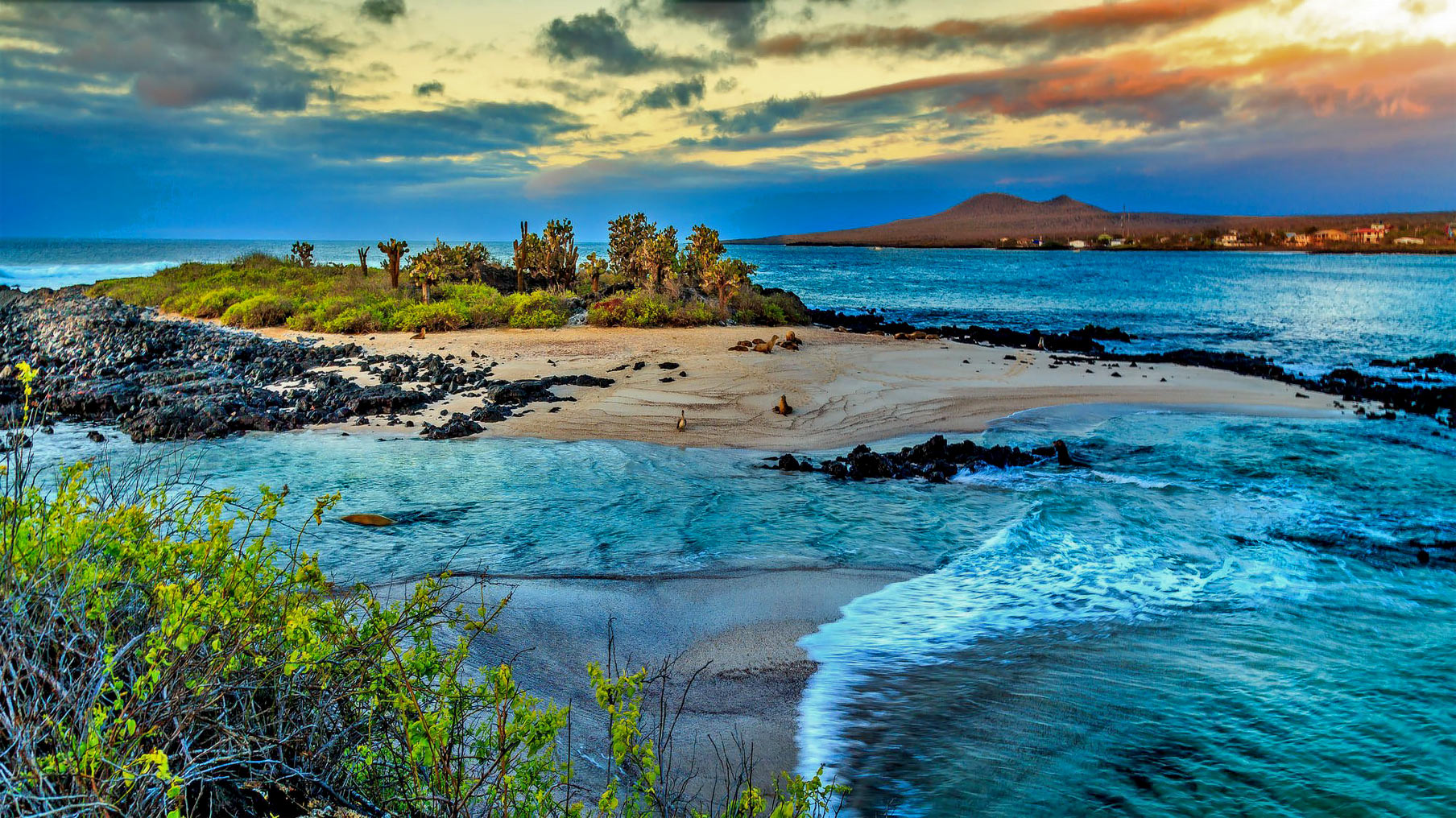 The Galápagos Islands, Nature's Perfection