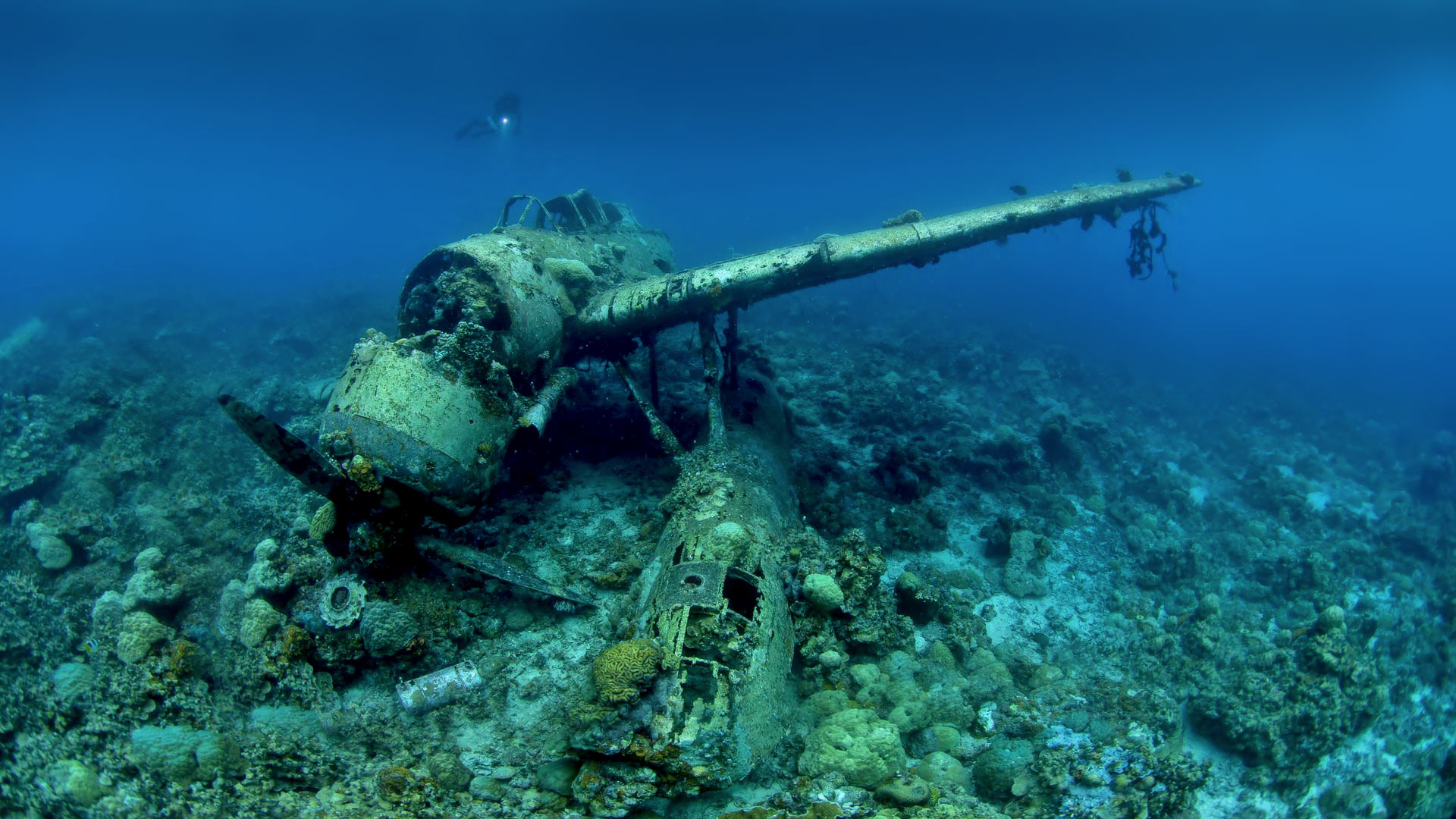 Chuuk Lagoon World War 2 wreck.