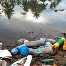 Plastic rubbish pollution.